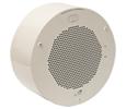 Conduit Speaker Mount (RAL 9002)