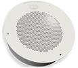 VoIP Singlewire Enabled Speaker - Standard Color